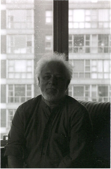 Anils Ghost by Michael Ondaatje - Essay Example