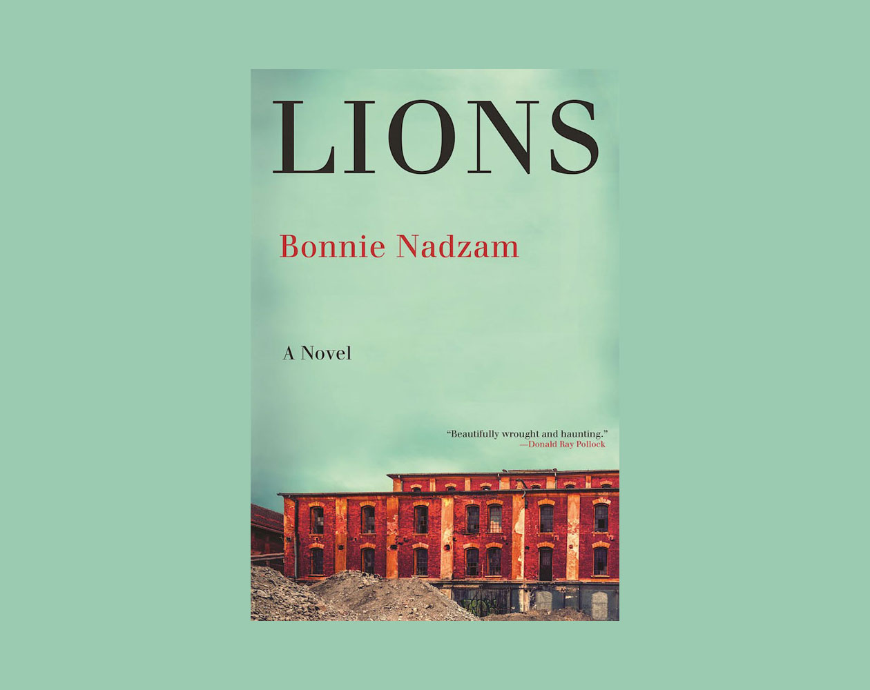The 2017 tournament of books long list the morning news lions by bonnie nadzam solutioingenieria Images