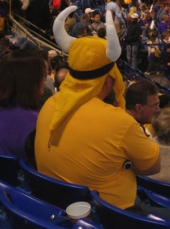 The Vikings Stink