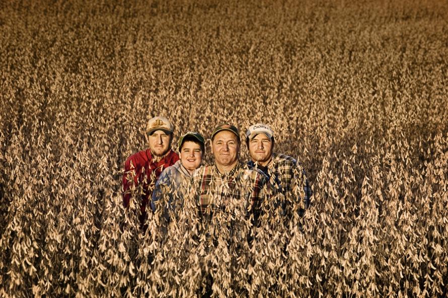 American Farmer - The Morning News